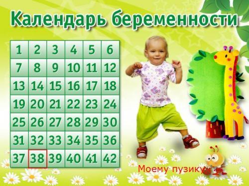 Рассчитать дату беременности по неделям