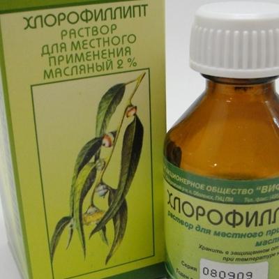 Описание препарата Хлорофиллипт