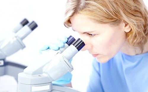 Исследование эндометрия